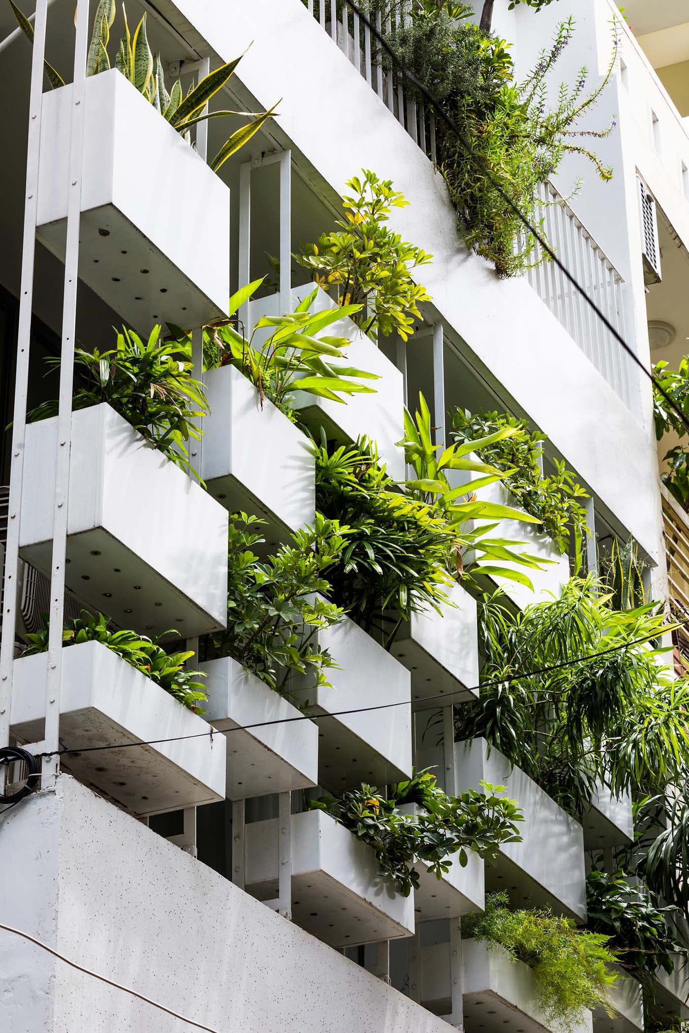 Planters have been added to the facade of this modern house, incorporating a  natural element into the concrete exterior.