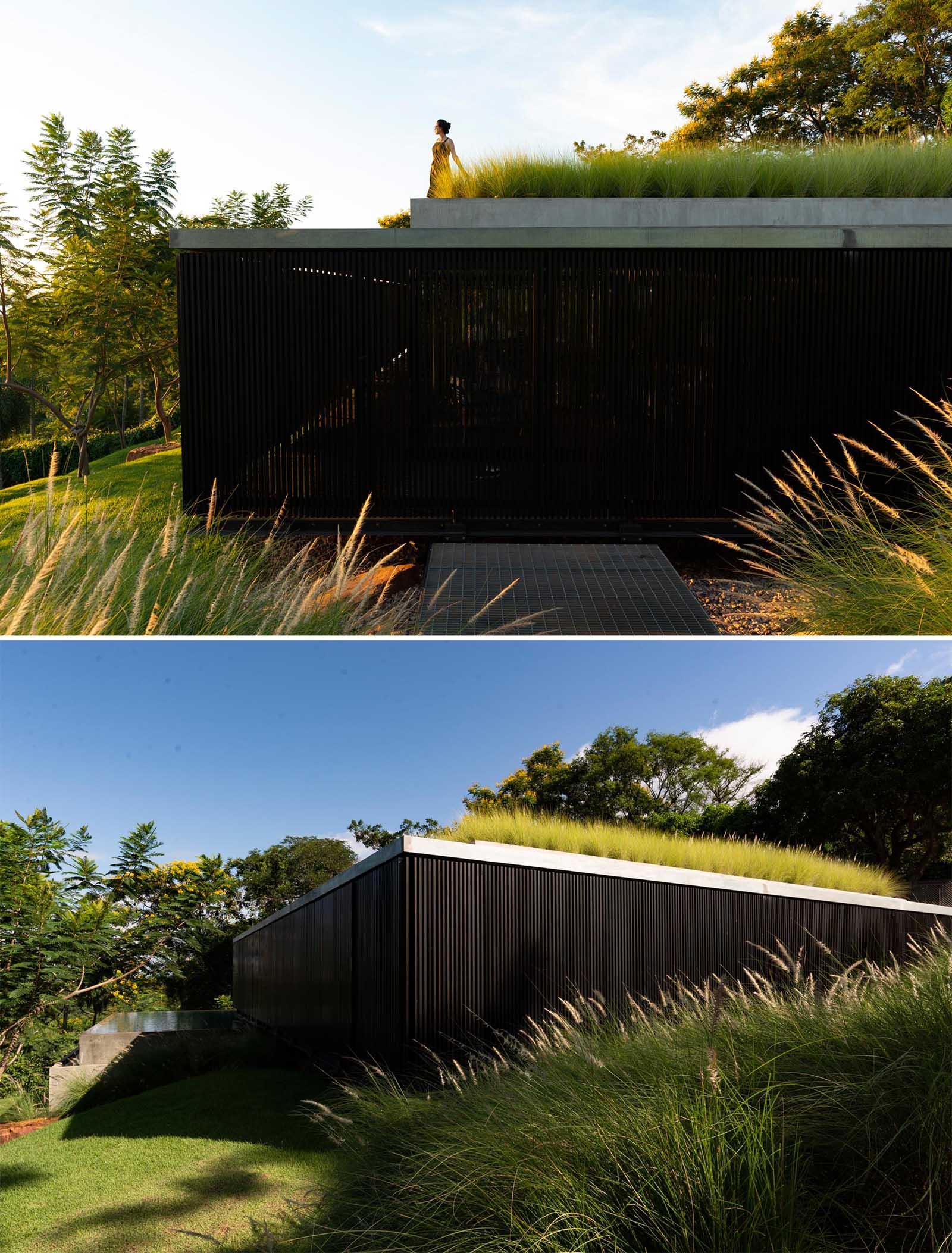 A modern house with a green roof and black screens that wrap around the exterior.