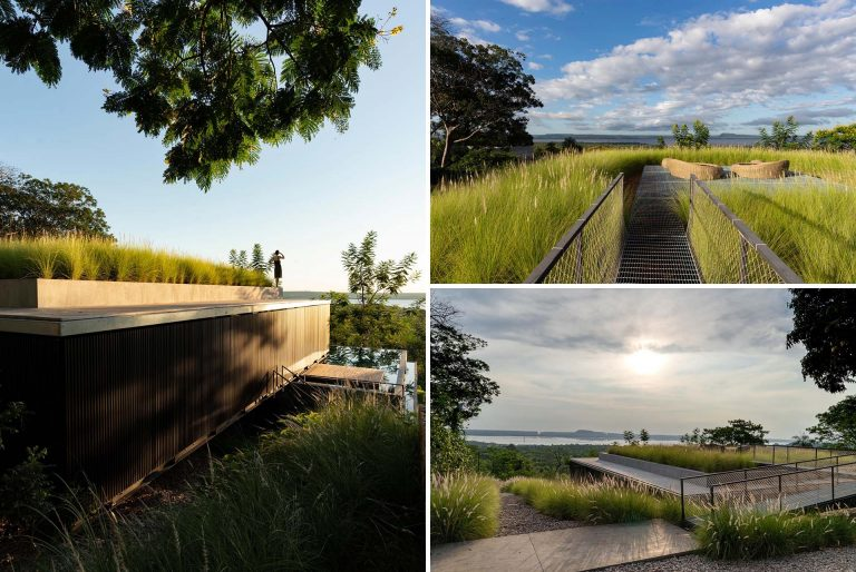 The Green Roof On This Home Has Tall Grasses Surrounding A Seating Area
