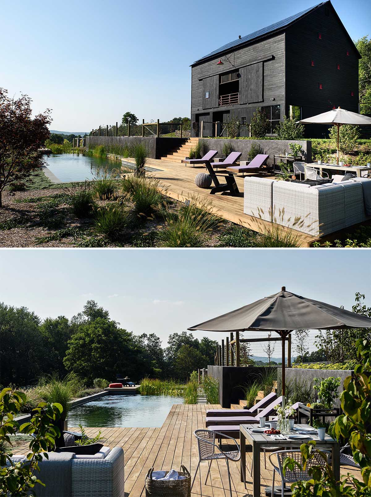 A modern black barn house with a natural swimming pool.