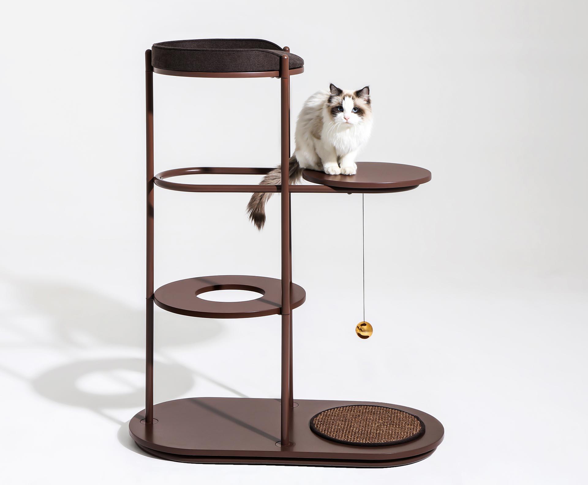 A modern cat free.