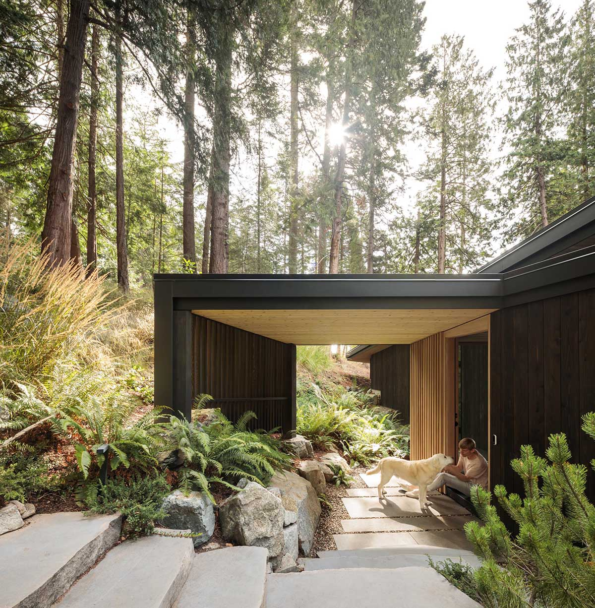 The entryway guides people to the front door with a path lined with boulders and ferns.