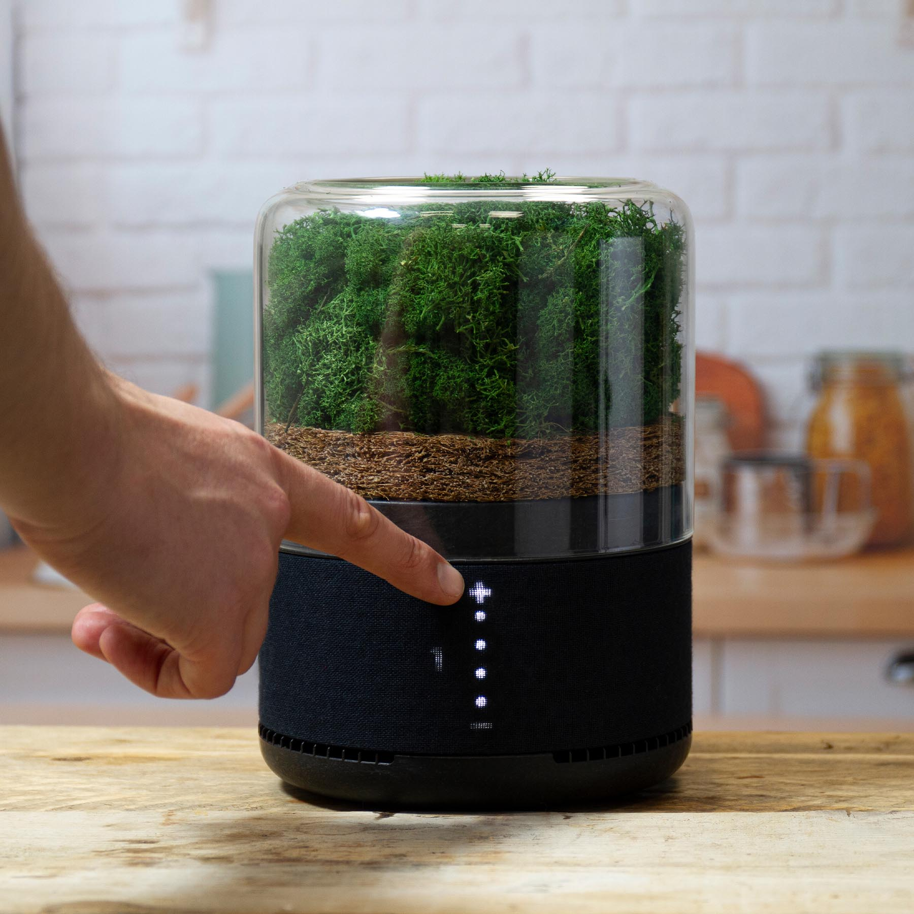 Briiv Air Purification by James Whitfield and Sean Sykes