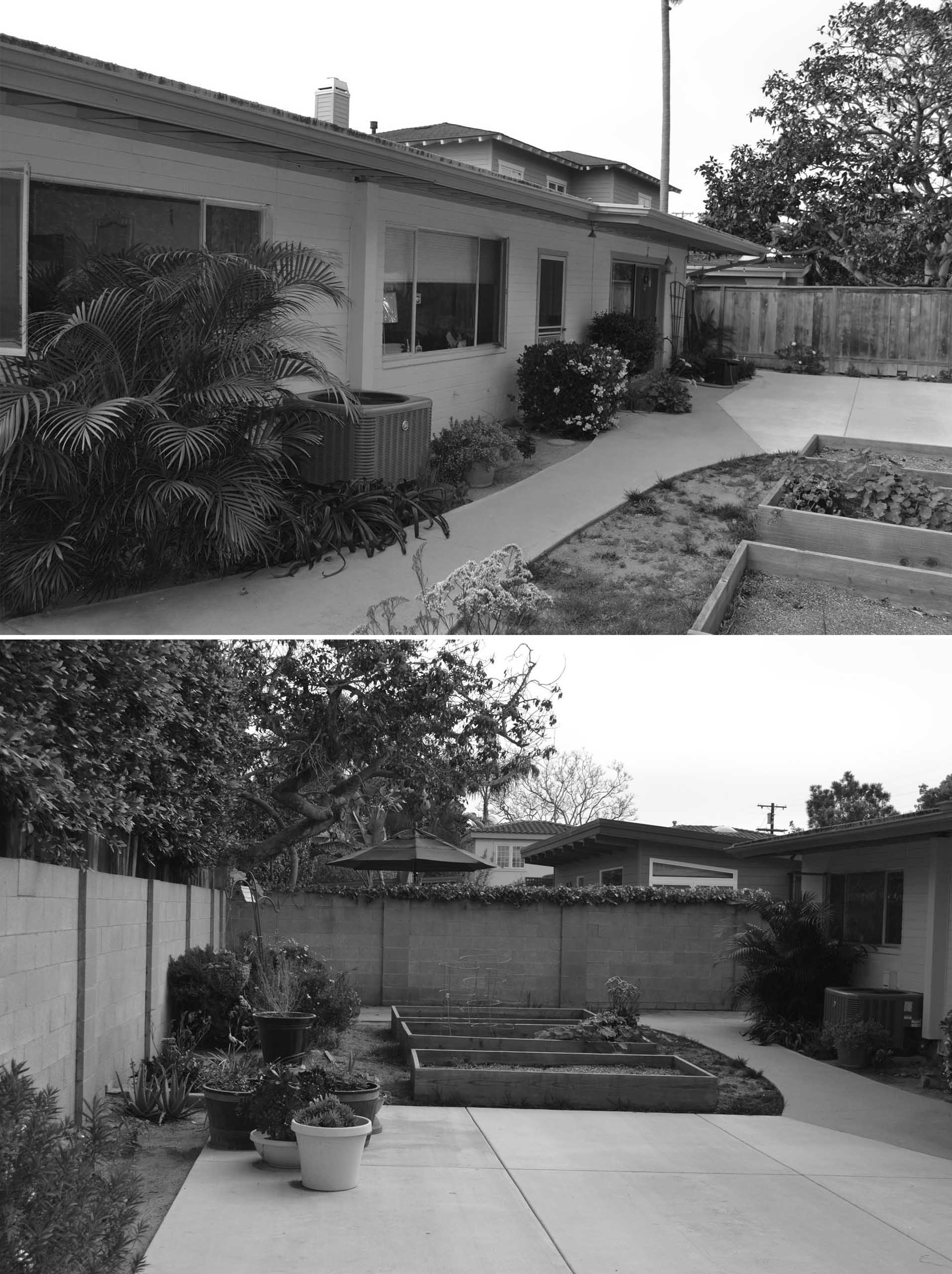 BEFORE PHOTOS of a yard before its renovation.