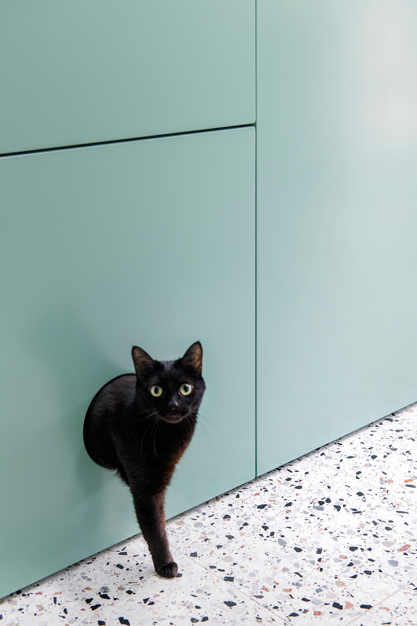 Modern mint green floor-to-ceiling cabinets with a dedicated area for a hidden kitty litter box.