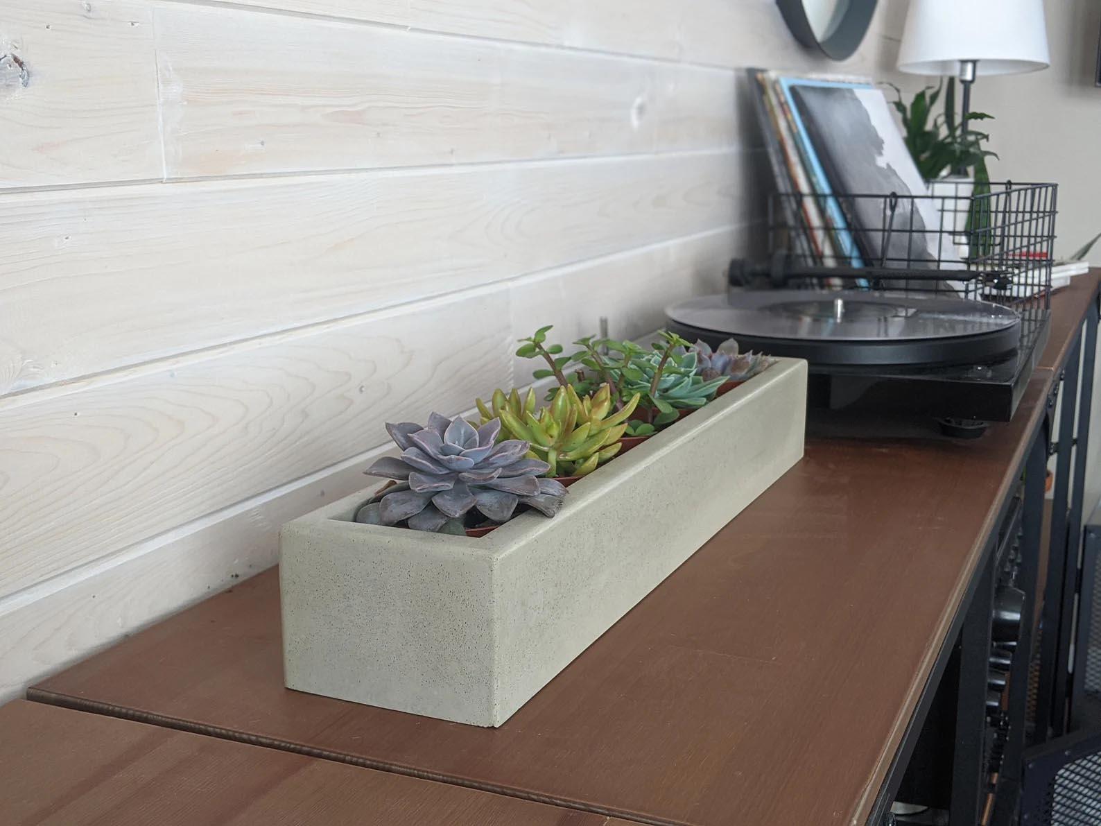 Modern Gift Ideas - Tabletop concrete succulent planter.
