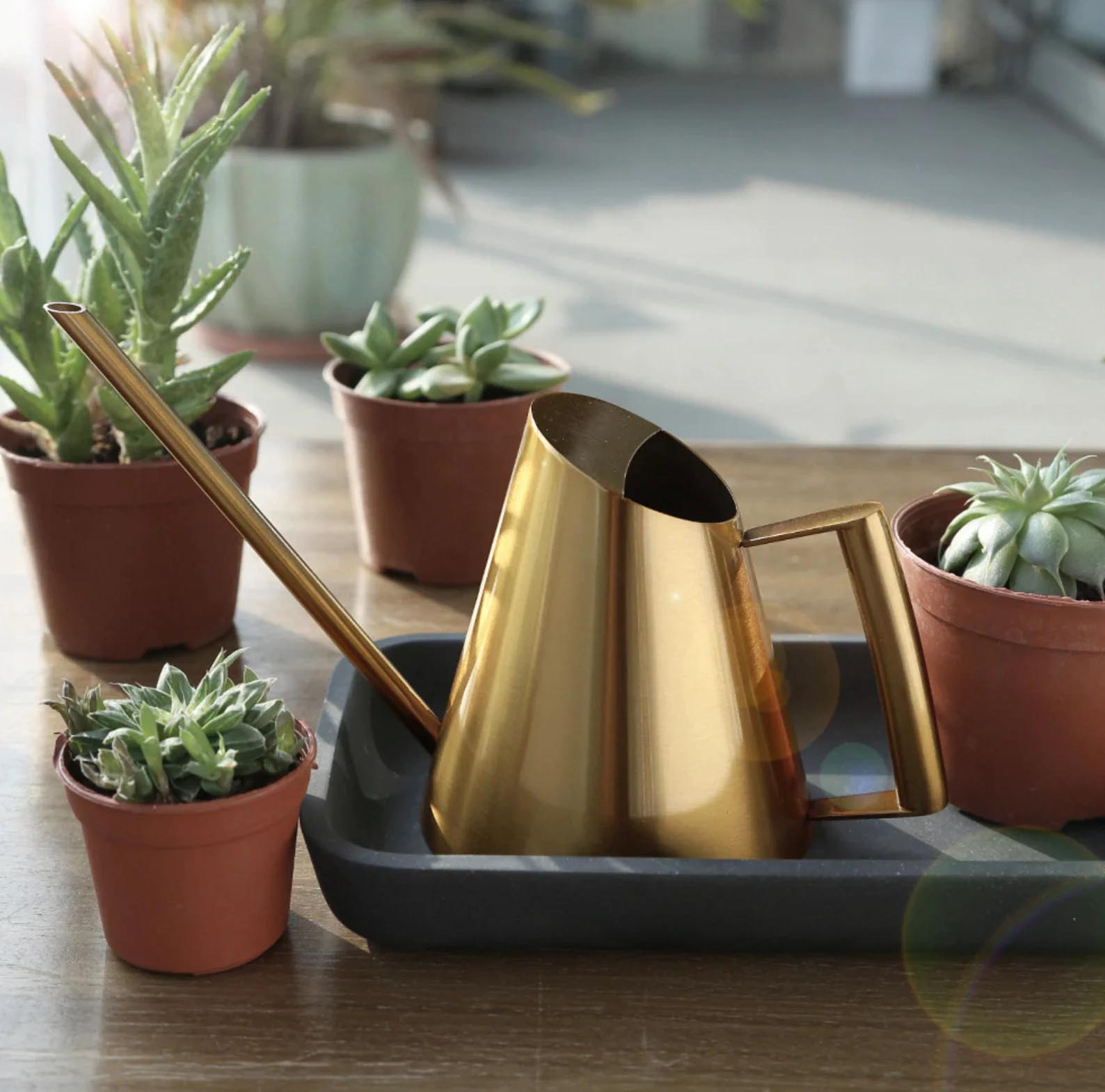Modern Gift Ideas - Watering Can.