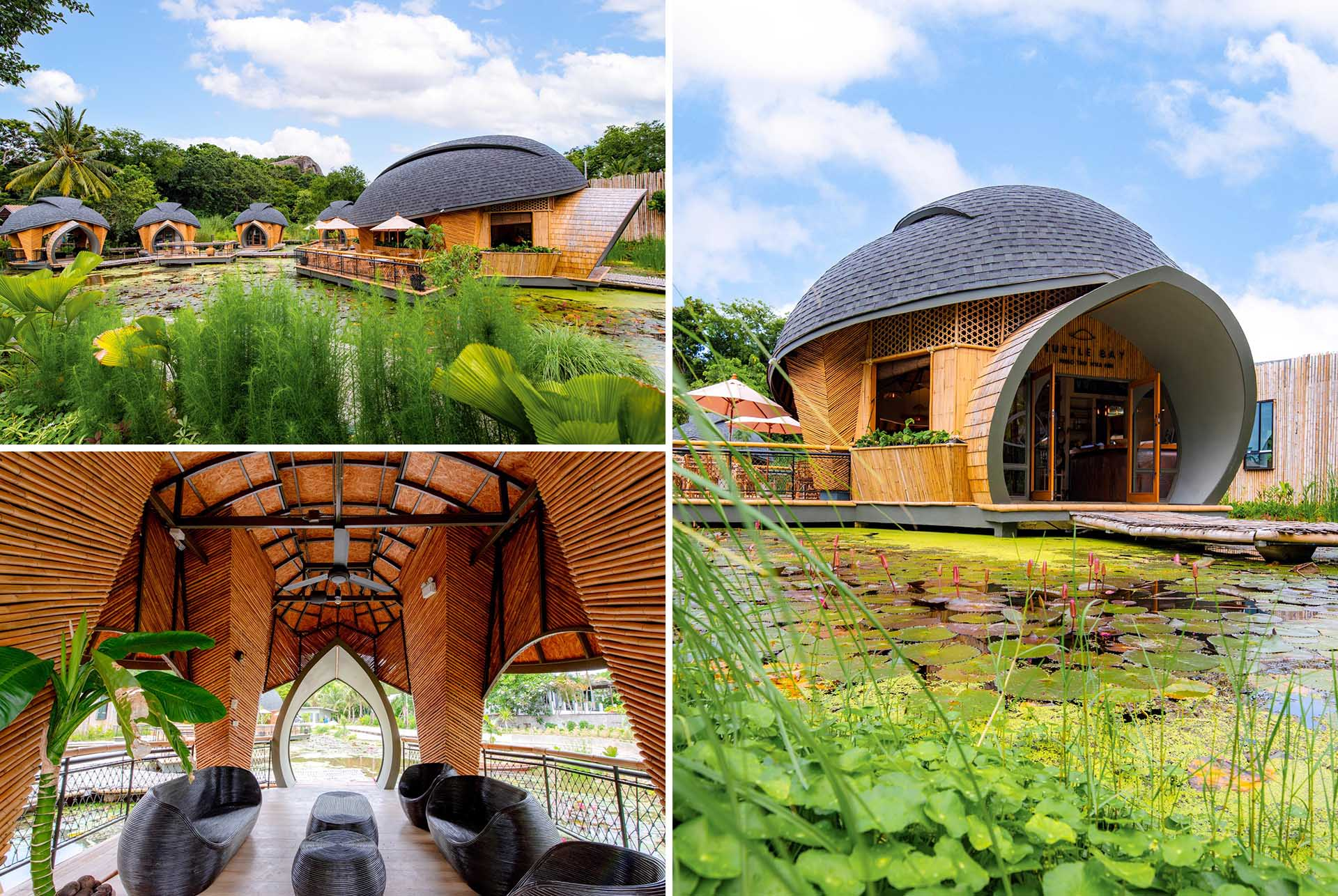 A modern eco-lodge in Thailand, that has cabins shaped like turtle shells that surround a lotus pond.